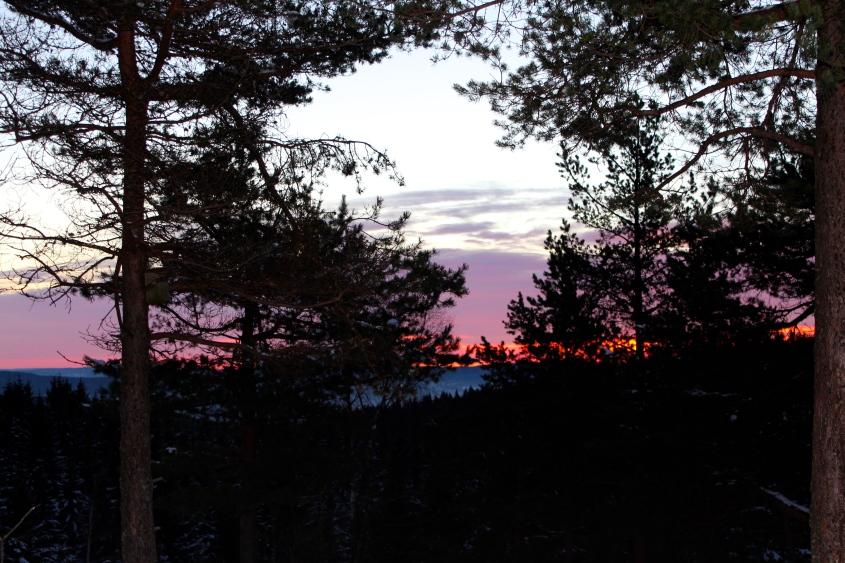 Utsikt fra Linnerudkollen